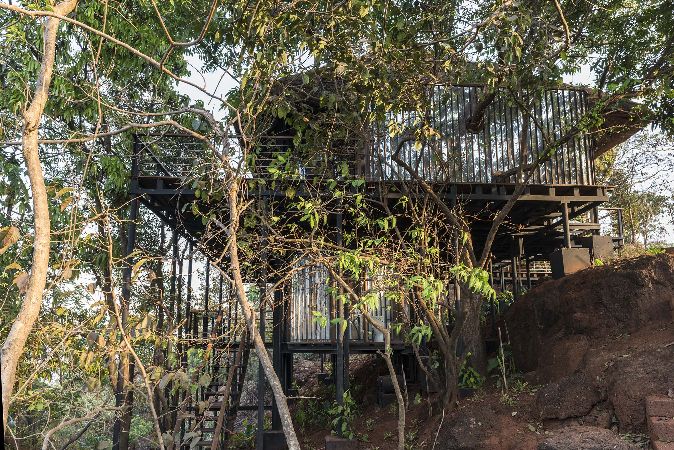treehouse in forest tala treehouse villa alibaug india
