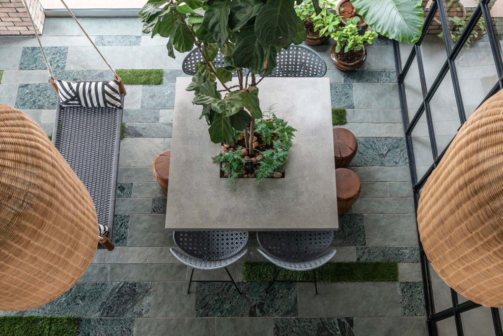 Double height courtyard with fiddle leaf fig tree