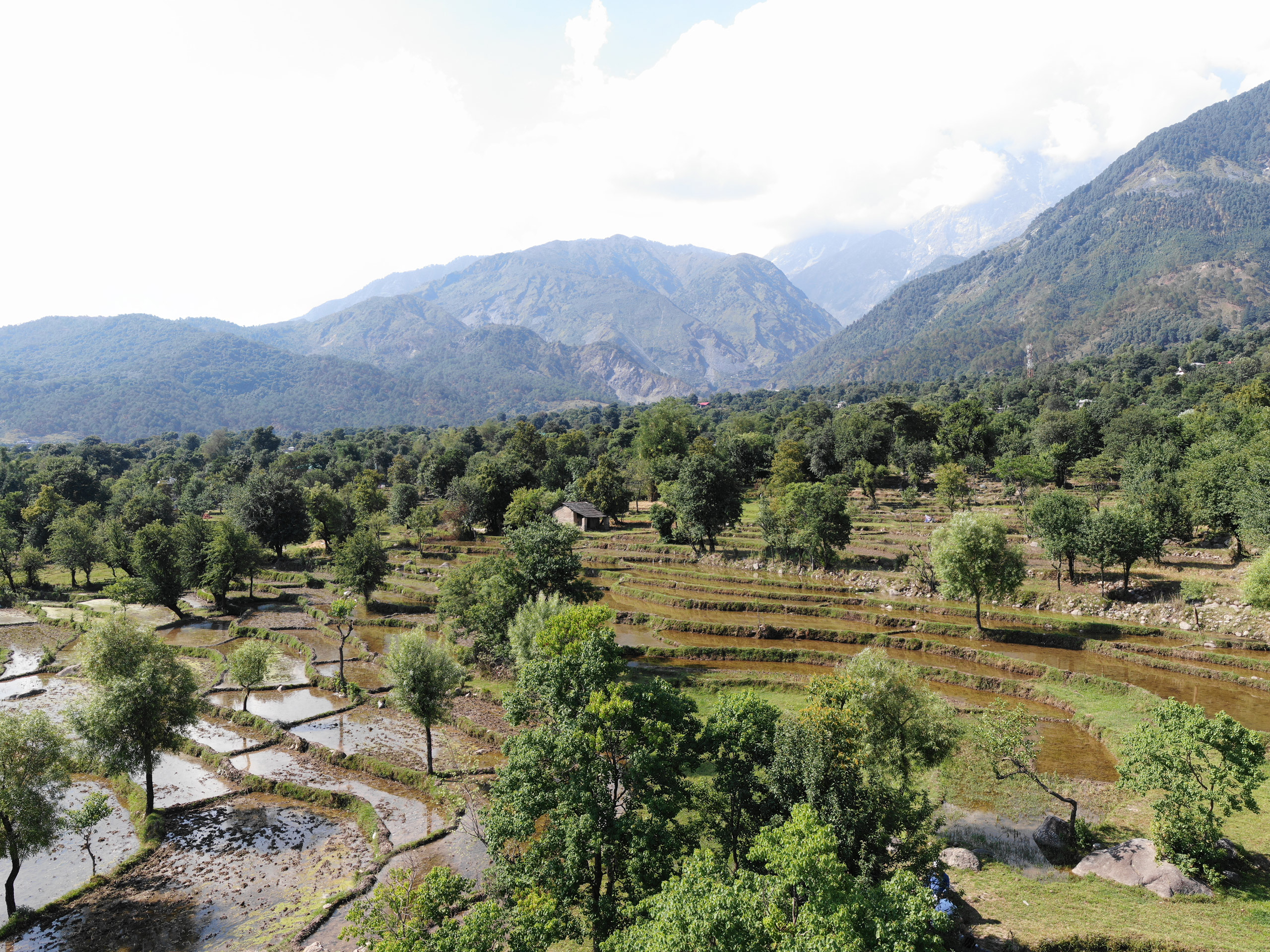 aerial drone photograph with terraced fields and Dhauladhar mountain range