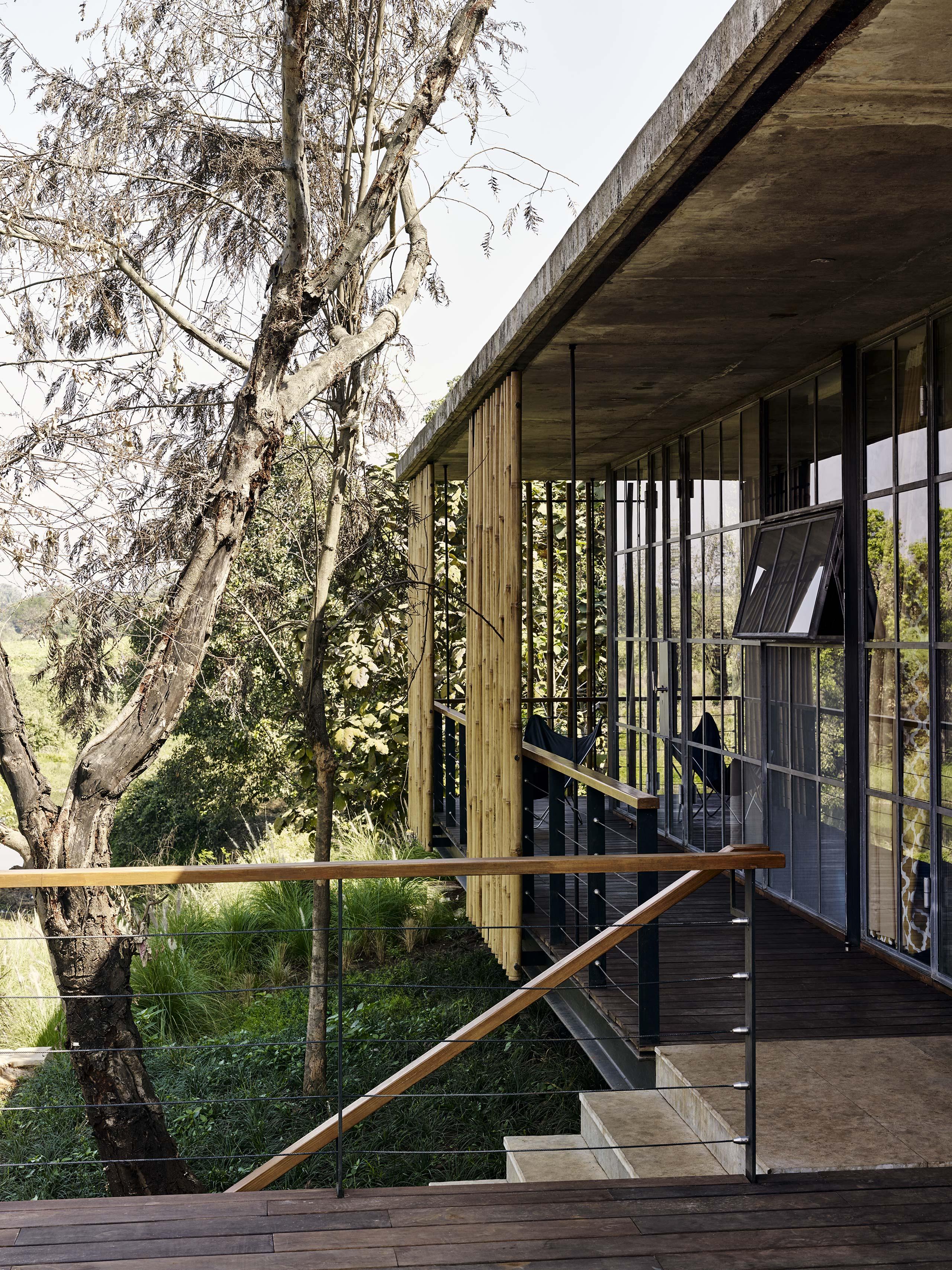 Riparian House verandah bamboo screen