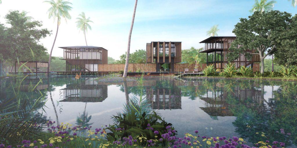 natural pond of Waikiki Wetland Resort